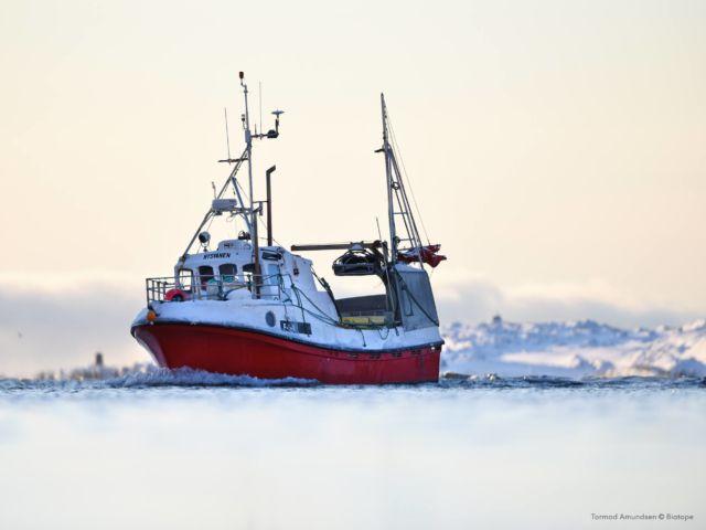 Tormod Amundsen